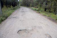 Дорога, ведущая в Сосновый Бор, вся разбита.