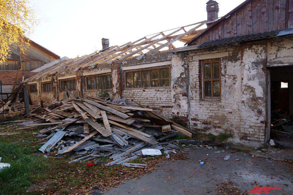 Брошенные на произвол судьбы животные были размещены в поселке Ферма и в Усть-Качке.