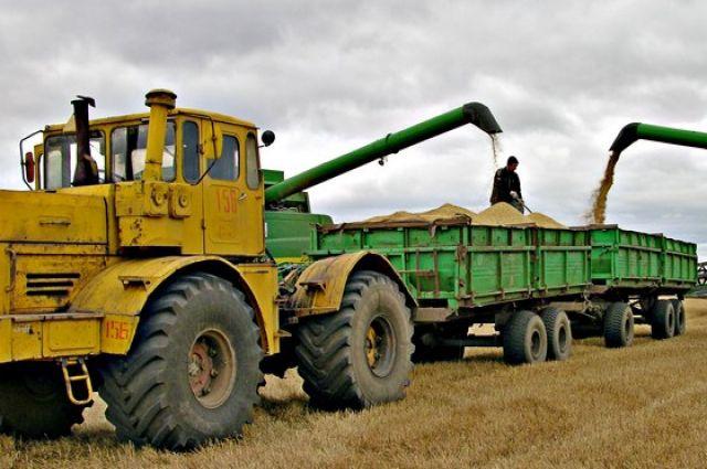 Урожайность зерновых на Южном Урале оказывается ниже плана