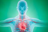 Брадикардия сердца: причины, симптомы и лечение