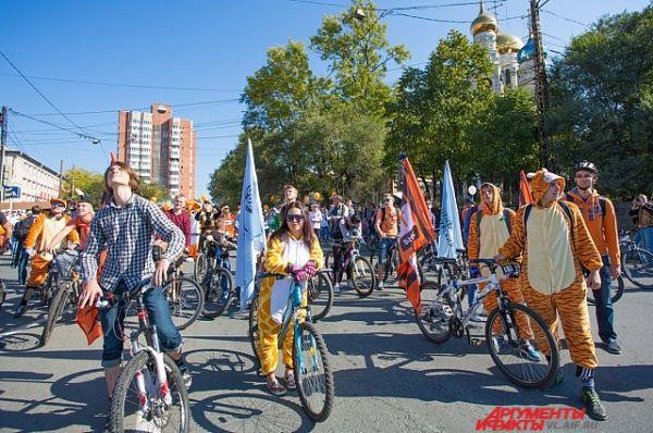 Велотигры - новинка от Владивостока.