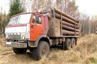 Всех подозреваемых в незаконной рубке леса задержали с поличным.