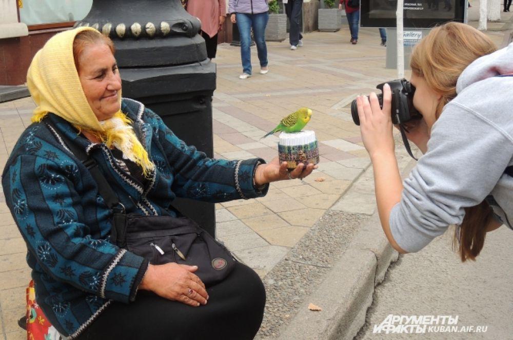 Женщина уверяет, что этот попугайчик предсказывает будущее