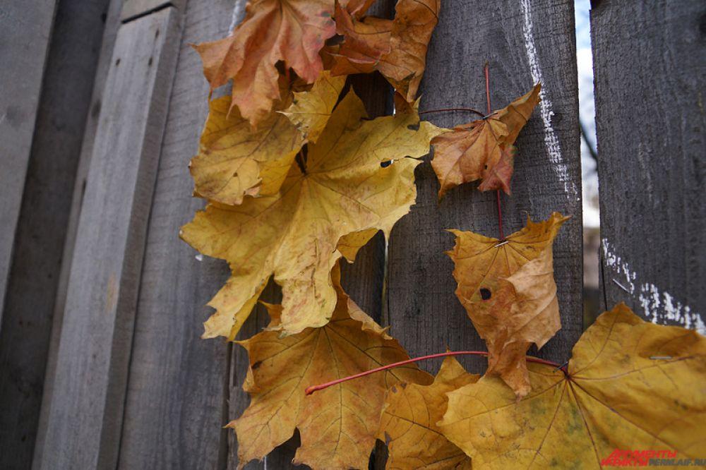 Каждый листок художники прибивали к забору с помощью скрепок.