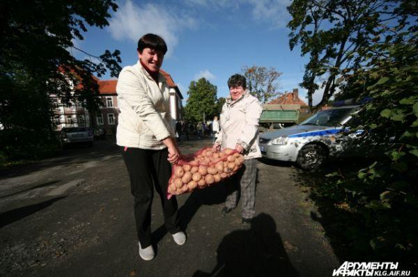 У фермеров, которые привезли на продажу выращенный ими картофель, товар расходился как горячие пирожки. Ещё бы:  при цене от 18 до 40 рублей за килограмм с магазинах, сельчане продавали картофель по 15 рублей за кило.