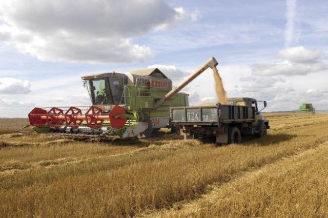 Если и придется сокращать финансирование, то это нельзя делать в сфере сельхозпроизводства.