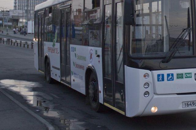 Мэрия Екатеринбурга поймала коммерческих перевозчиков на нарушениях