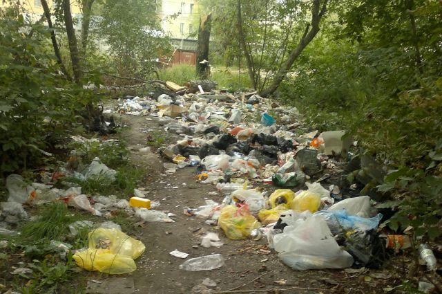 Чиновники делают фотоотчет на сайте Дубровского, устранив замечания горожан