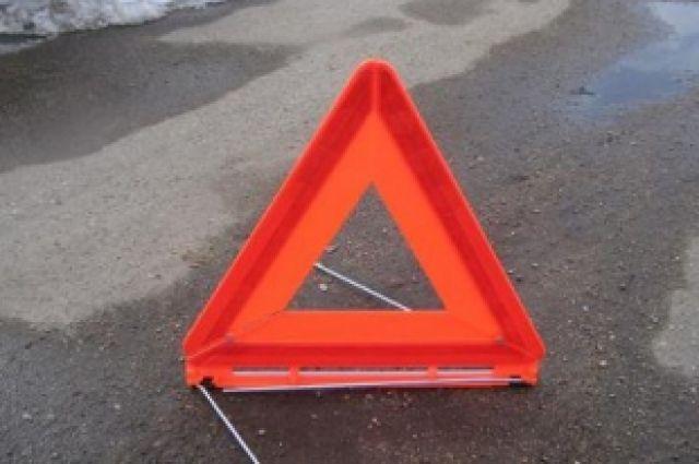 В крупной аварии под Омском погибло два человека.
