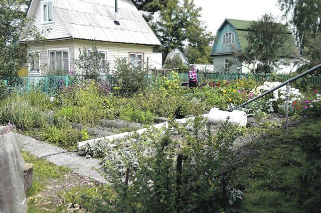 В Нижней Туре садоводы остались без домиков из-за соседства с газопроводом