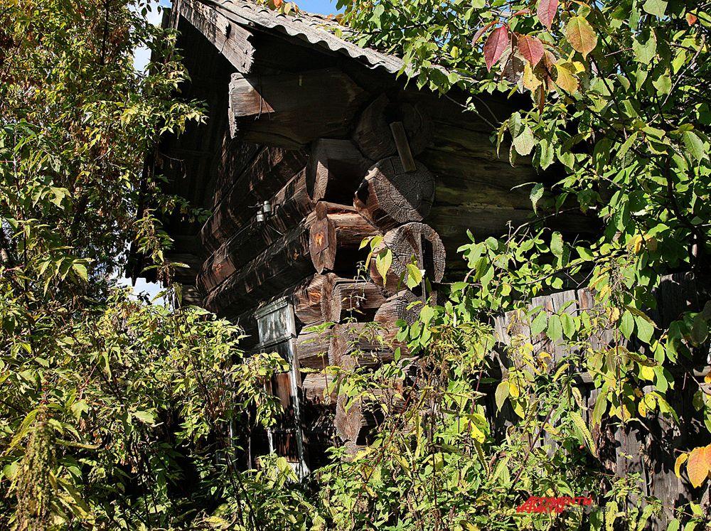 Два дома стоящих на ул.Демьяна Бедного построены из лиственницы и стоят на этом месте около 300 лет