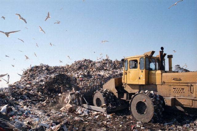 Омские мусорные свалки давно не отвечают современным требованиям.