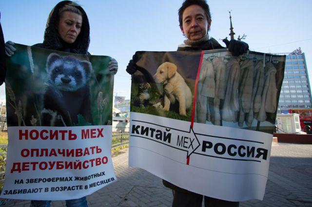 Участники антимехового марша в Челябинске сожгут в крематории шубу