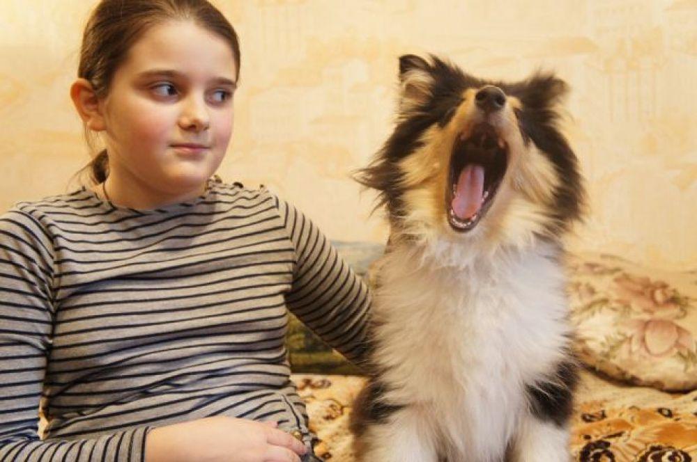 Вот это ротик! Катя Солтовец и колли Джессика. Автор Анна Остапенко