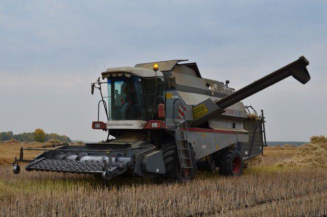 Наивысшая урожайность зерна получена в Усольском, Черемховском, Тулунском, Аларском и Куйтунском районах.