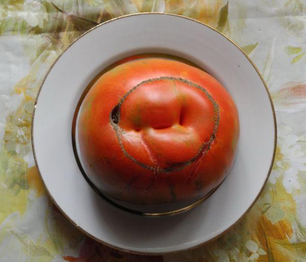 Овощной шарж на отца семейства.