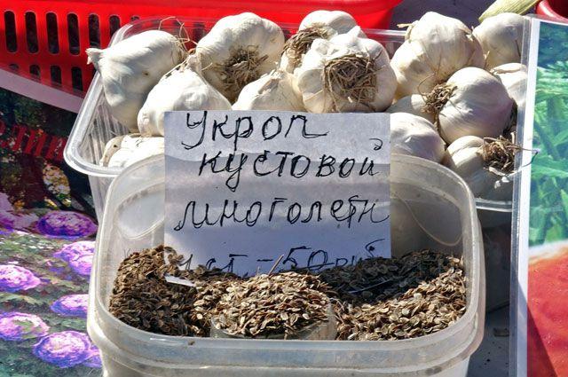 На выставке будут пресдтавлены семена.