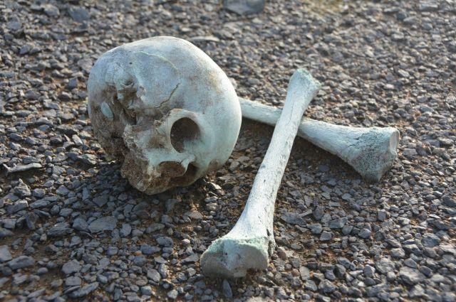 Размытое кладбище на Южном Урале с останками людей на земле перезахоронят