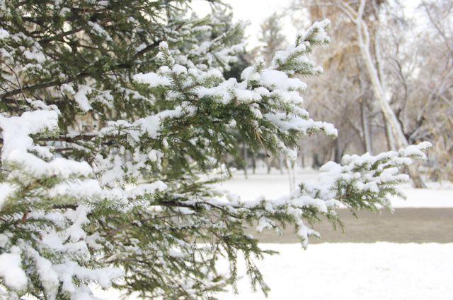 В северных районах Приангарья местами пройдет сильный снег.