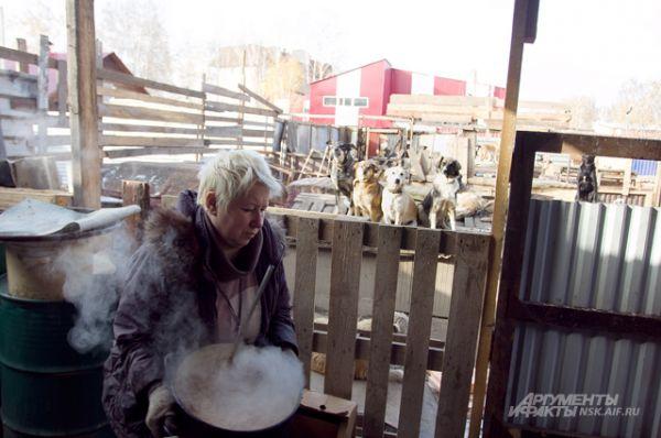 Галина Смирнова, председатель общественной организации «Защита животных» готовит для своих подопечных сытный ужин.