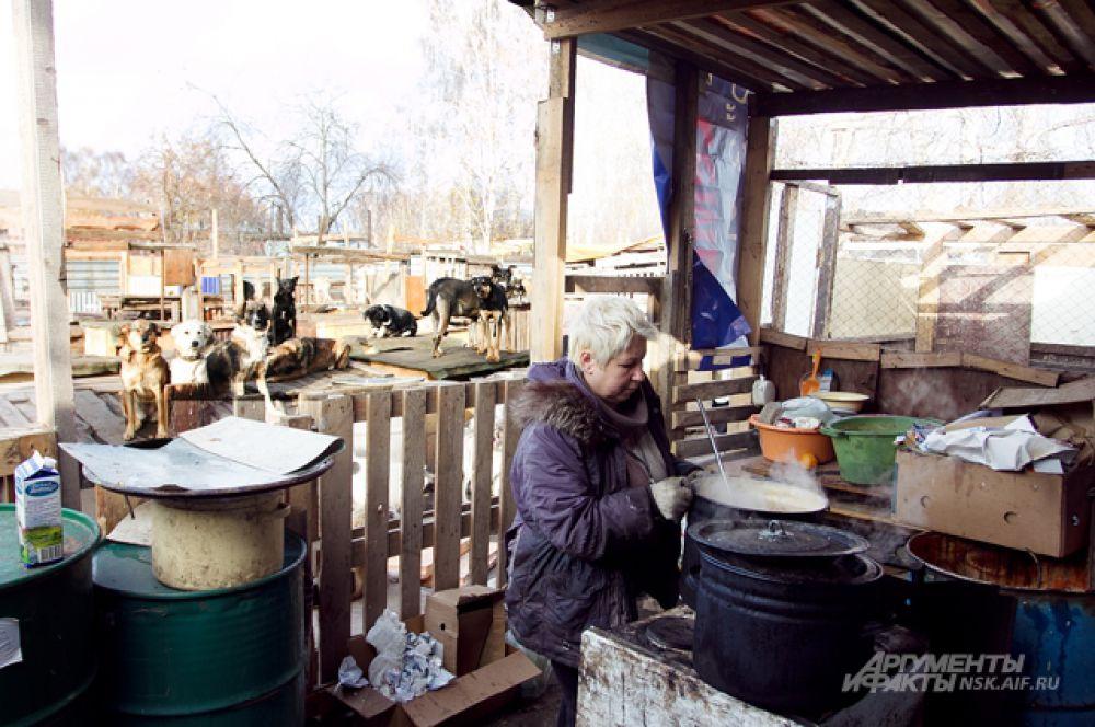 Еду для оравы собак готовят в эмалированных вёдрах.