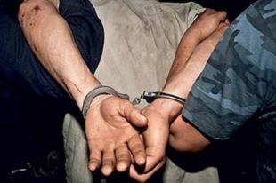 Задержанные в Москве предполагаемые педофилы арестованы