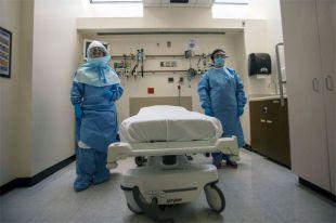 В России женщину с ребенком отправят в больницу с подозрением на Эболу
