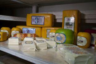Италия сократила экспорт овощей и фруктов в РФ на 63%