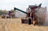 Миллионный рубеж хлеборобы перешагнули, значит, зерна хватит до следующего урожая.