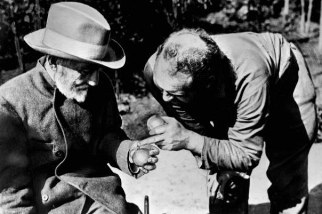 Селекционер Иван Мичурин со своим помощником в саду.
