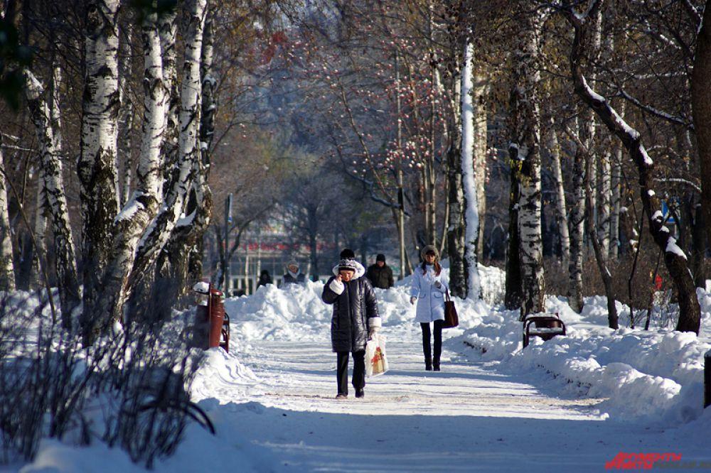 К полудню в холодный вторник выглянуло солнце.