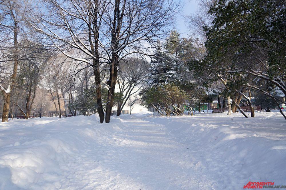 Кроме того, на похолодание оказал влияние нетипичный для середины октября снежный покров высотой до 30 см.