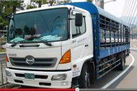 Основную роль в ДТП сыграл китайский грузовик марки Hino, на той же базе, что и изображённый.