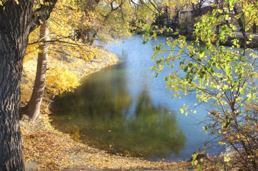 «Осень. Сказочный чертог, всем открытый для обзора. Просеки лесных дорог, заглядевшихся в озера…» Б. Пастернак