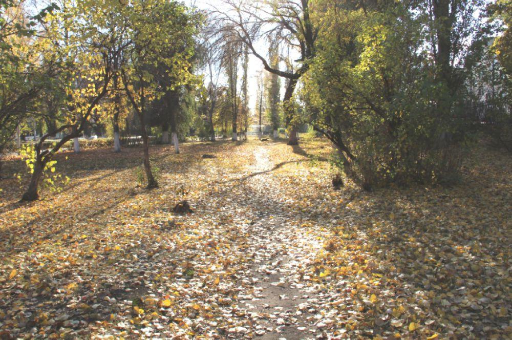 «Октябрь уж наступил — уж роща отряхает последние листы с нагих своих ветвей…» А. Пушкин