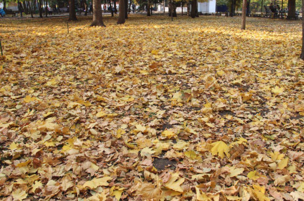 «Осень выгоняет меня из парка, сучит жидкую озимь и плетется за мной по пятам, ударяется оземь шелудивым листом и, как Парка, оплетает меня по рукам и портам паутиной дождя…» И. Бродский