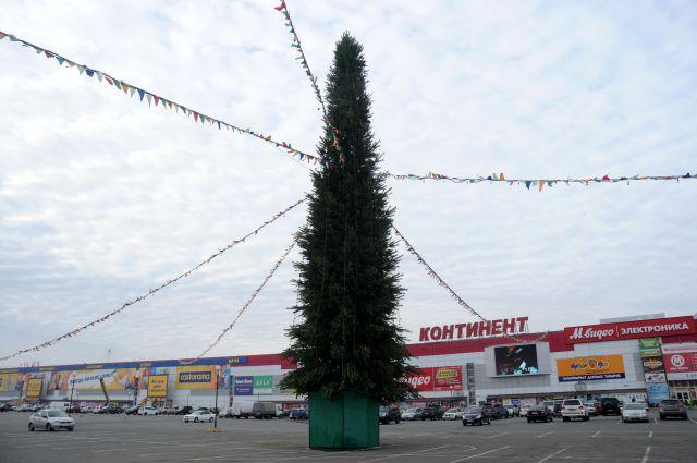 В Омске появляются первые новогодние ёлки.