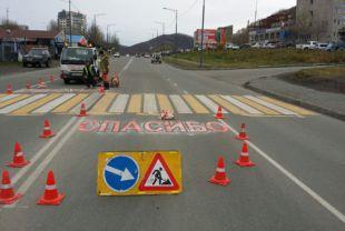 Камчатская Госавтоинспекция поблагодарила вежливых водителей за пешеходов