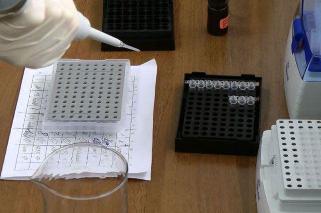 Для работы в ДНК-лаборатории подготовлено 5 специалистов.