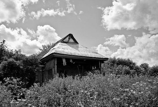 В деревне Уруково Трубчевского района остался один дом, где ещё теплится жизнь - хозяева приезжают туда летом, как на дачу.