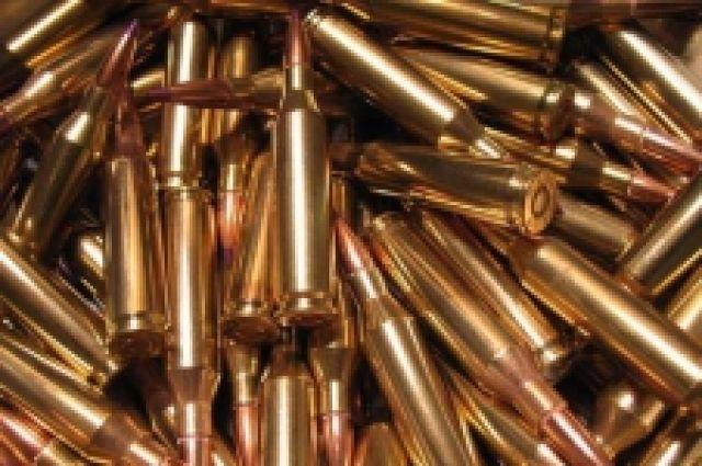 В шкафу у мужчины было найдено более ста патронов.
