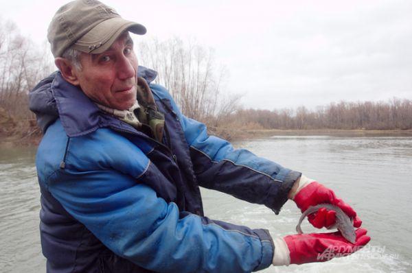 Кроме осетров в предыдущие годы специалисты рыбного производства отпускали в реку мальков и двухлеток нельмы, муксуна и пеляди.