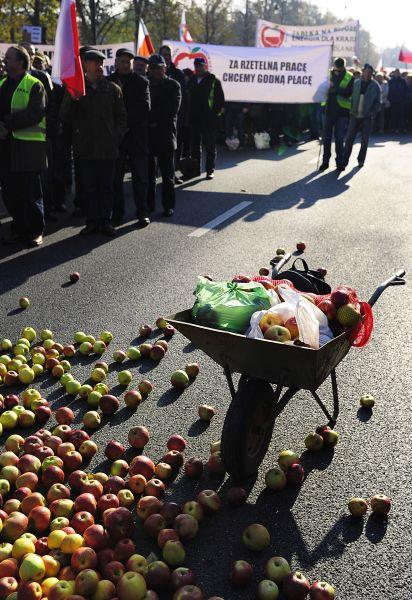 Как пояснил глава Союза садоводов Польши Мирослав Малишевский, «ситуация трагична», так как у производителей сельскохозяйственной продукции нет возможности продать яблоки, которые ранее экспортировались в Россию.