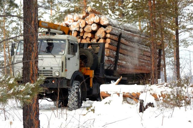 Лесовоз на базе «КамАЗа».