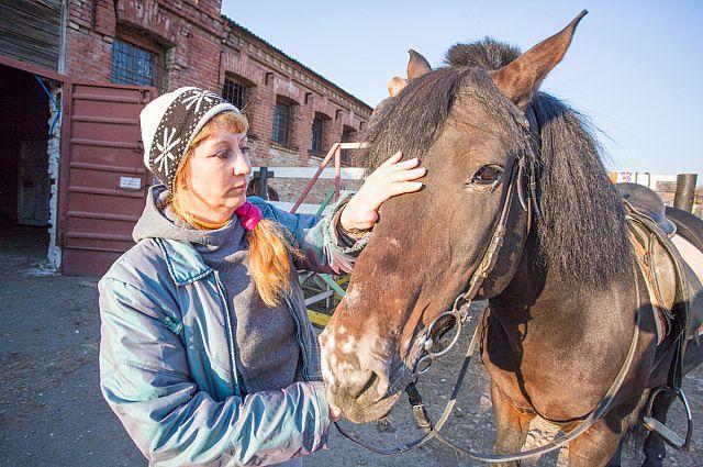 С лошадью можно и поговорить, и вылечить болезнь.