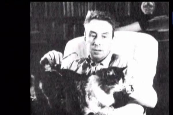Гарин с котом.