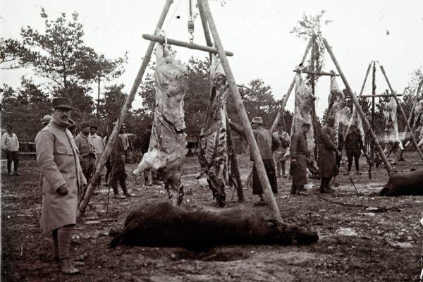 Мясник обрабатывает туши для французских солдат.