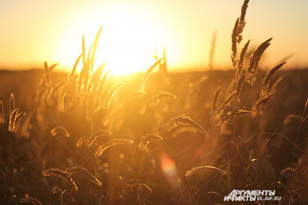 Осень - самое яркое время года.