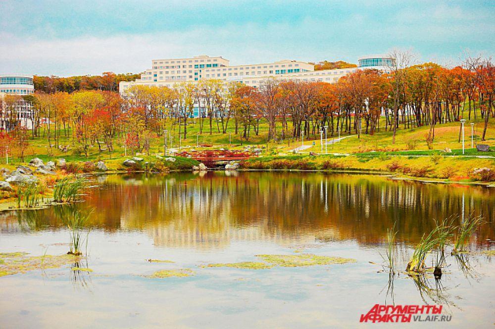 В кампусе ДВФУ на острове Русский осень необычайно яркая.