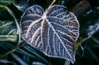 Похолодание